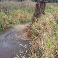 Urządzenie tarlisk na rzece Redze Sława 19
