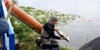 Wypuszczanie ryb