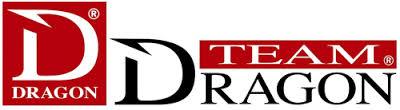 Logo Dragon Team
