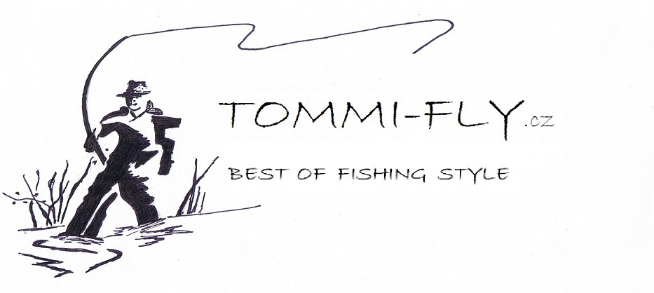 LOGO Tommi-fly